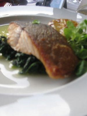 μαγείρεμα for your dog poached salmon on a bed of spinach